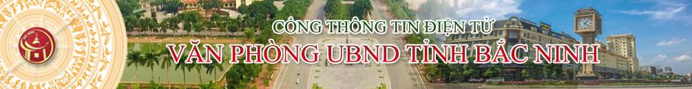 banner dau trang 2019